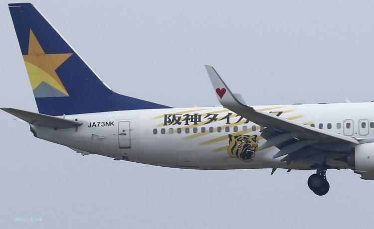 C-2363.jpg