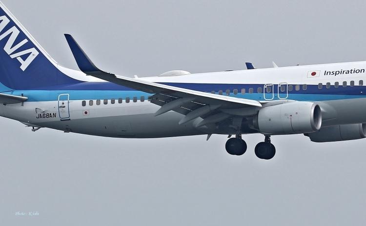 C-2370.jpg