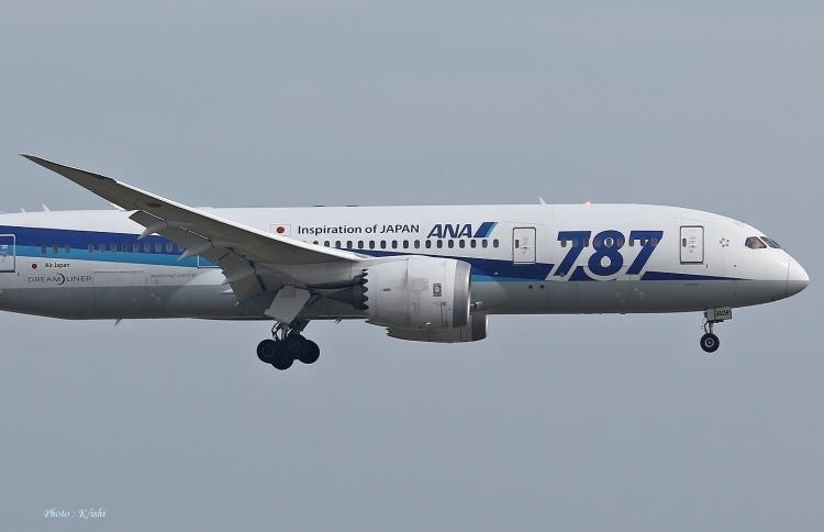 C-2377.jpg