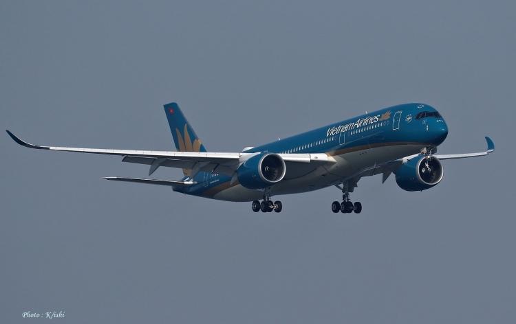 C-2481.jpg