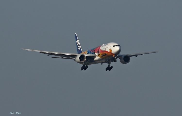 C-2496.jpg
