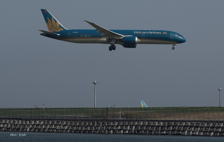 C-2562.jpg