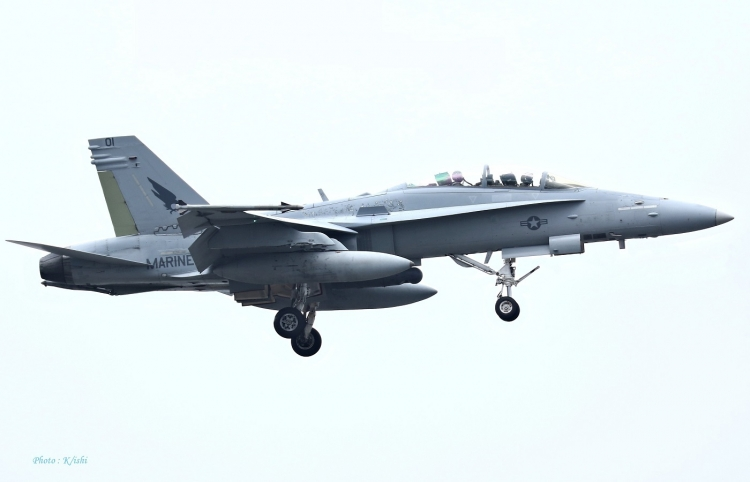 D-96.jpg