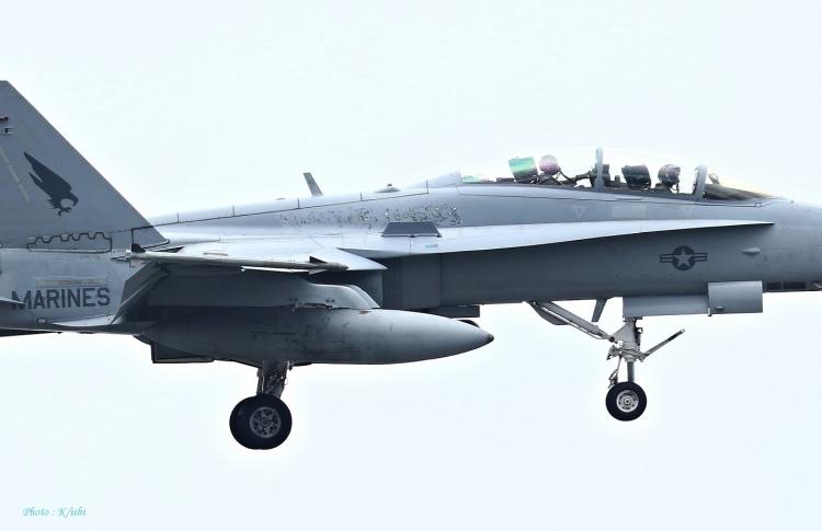 D-97.jpg