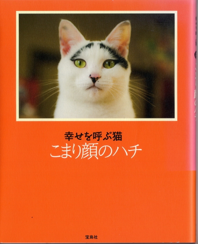 book005a2.jpg