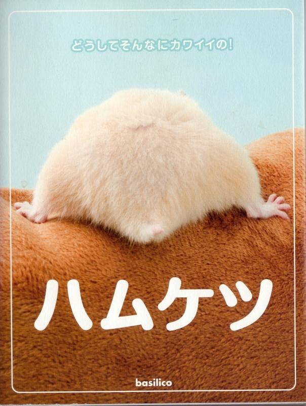 book008a2.jpg