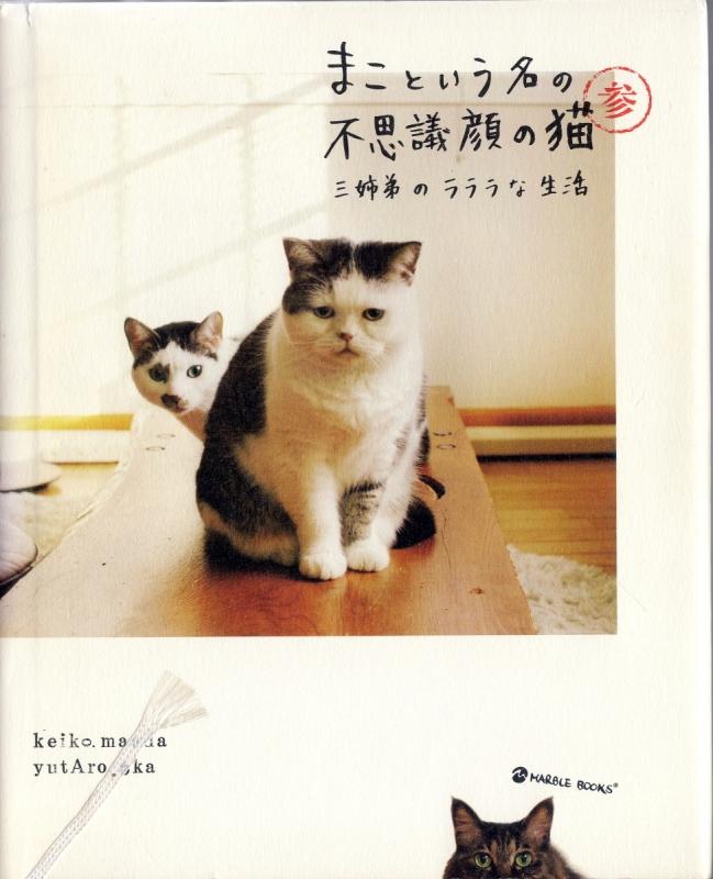 book011a2.jpg