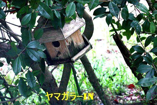 IMG_7812__.jpg