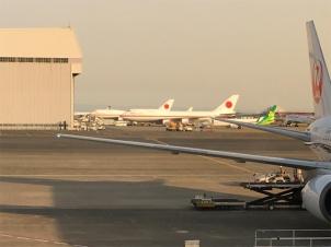 羽田空港で日本国政府専用機を発見しました。