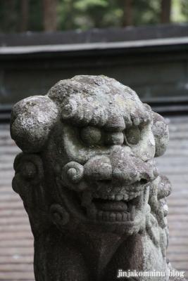 戸隠神社 宝光社(長野市戸隠)14
