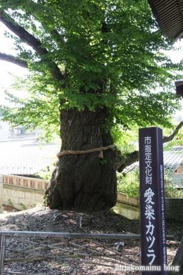 北向き観音(上田市別所温泉)13