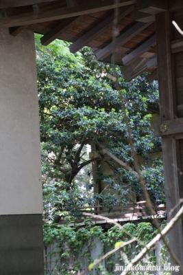 住吉神社(安曇野市三郷温)40