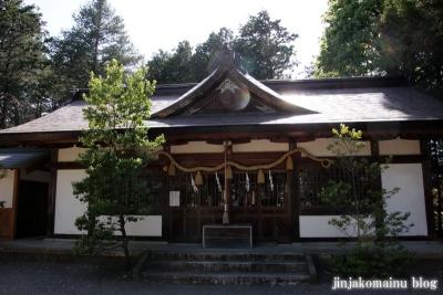 細萱洲波神社(安曇野市豊科南穂高西浦)19