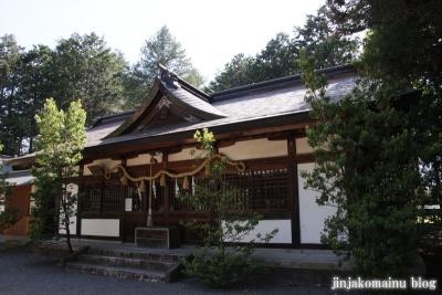 細萱洲波神社(安曇野市豊科南穂高西浦)20