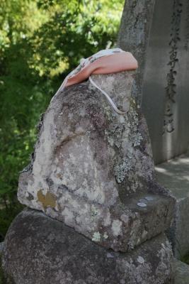 青麻神社  (仙台市宮城野区岩切字青麻沢)5