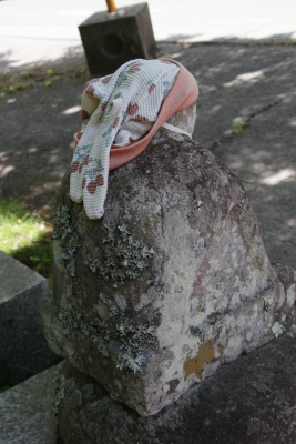 青麻神社  (仙台市宮城野区岩切字青麻沢)7