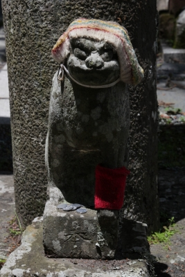 青麻神社  (仙台市宮城野区岩切字青麻沢)9