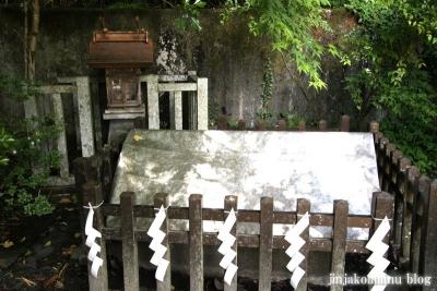 青麻神社  (仙台市宮城野区岩切字青麻沢)43