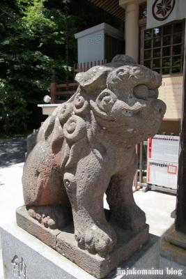 青麻神社  (仙台市宮城野区岩切字青麻沢)53