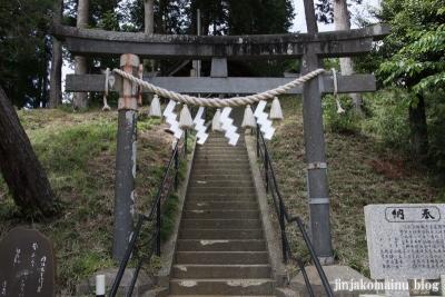浮島神社  (多賀城市浮島)3