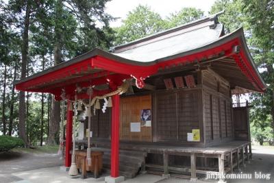 浮島神社  (多賀城市浮島)8