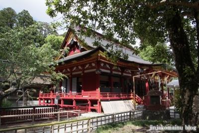 塩竈神社  (塩竈市森山)49