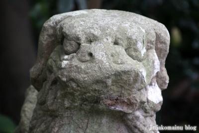 塩竈神社  (塩竈市森山)101