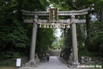 塩竈神社  (塩竈市森山)113