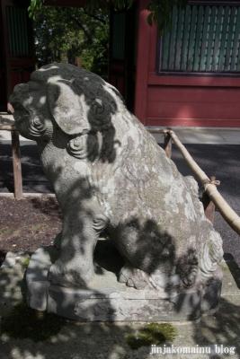 塩竈神社  (塩竈市森山)75