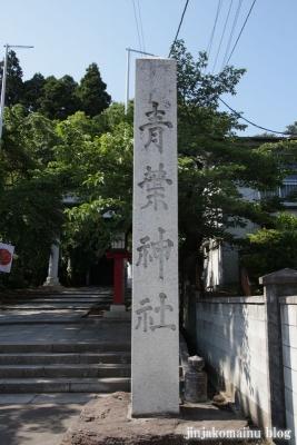 青葉神社 (仙台市青葉区青葉町)2