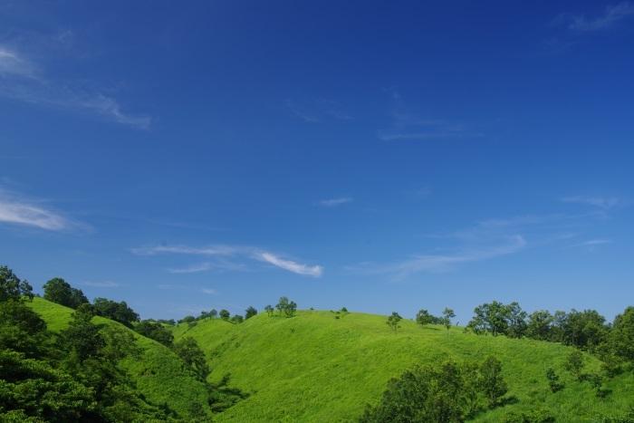 日田往還大草原