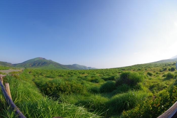 阿蘇山に広がる草原