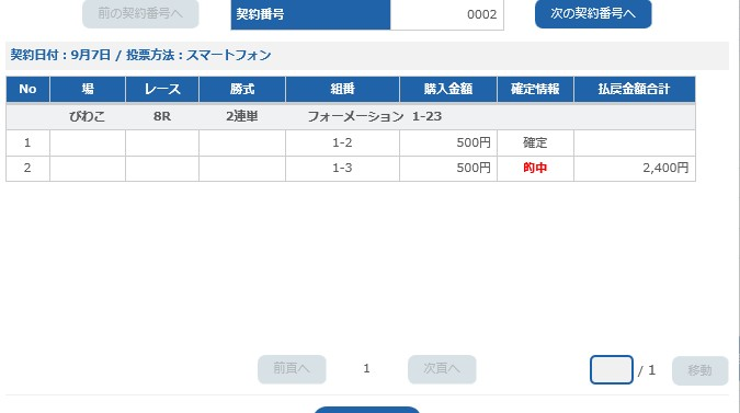 琵琶湖8レ-ス