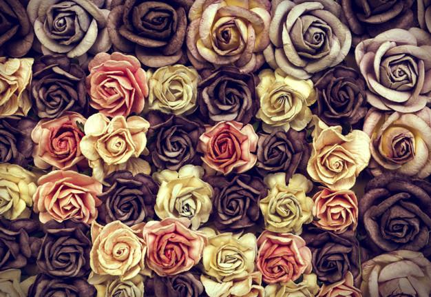 dried-roses_53876-23426.jpg