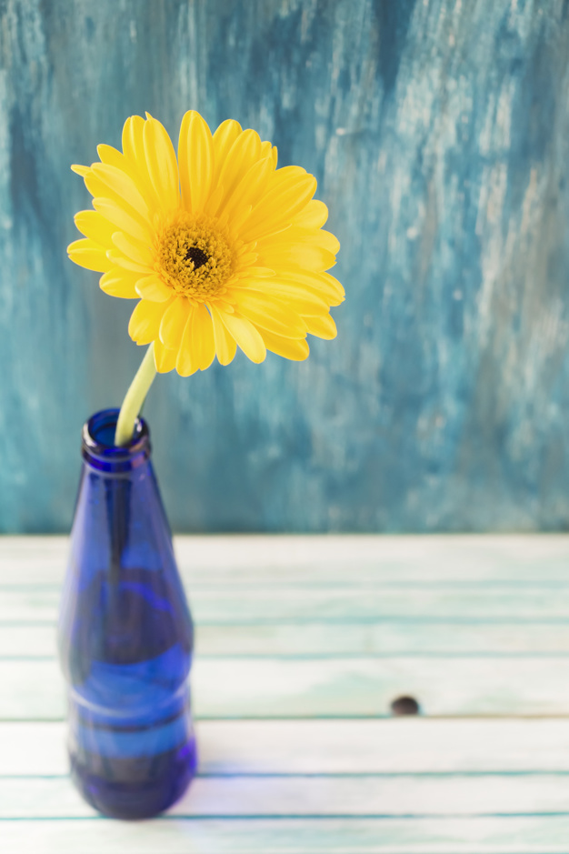 overhead-view-of-yellow-gerbera-flower-in-the-bottle-on-wooden-table_23-2147874274.jpg