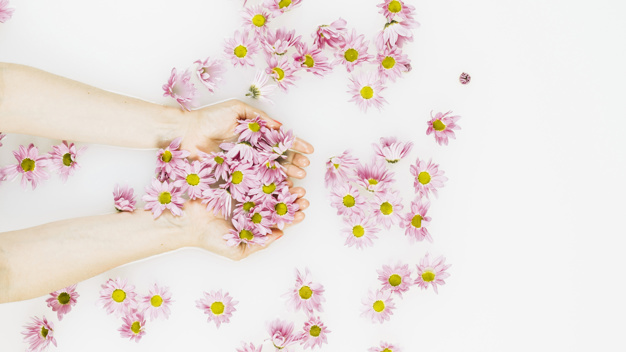 woman-s-hand-holding-beautiful-pink-flowers_23-2147830278.jpg