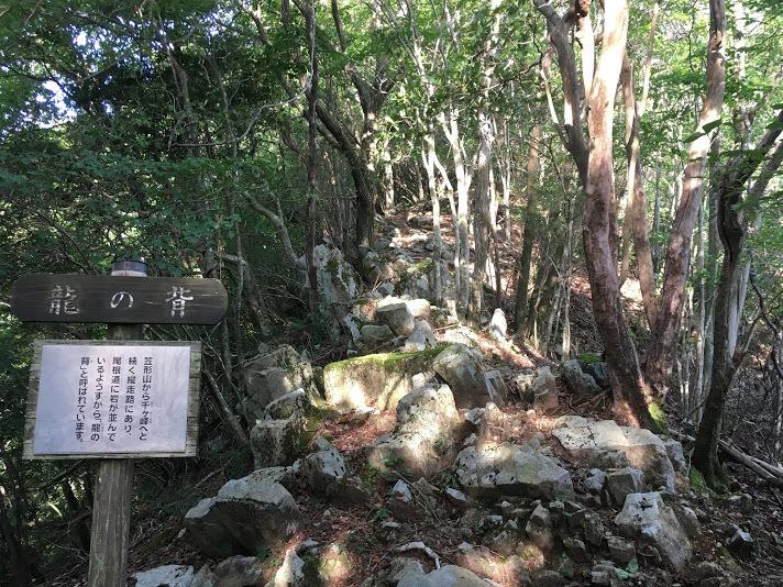 2018笠形山/龍の背