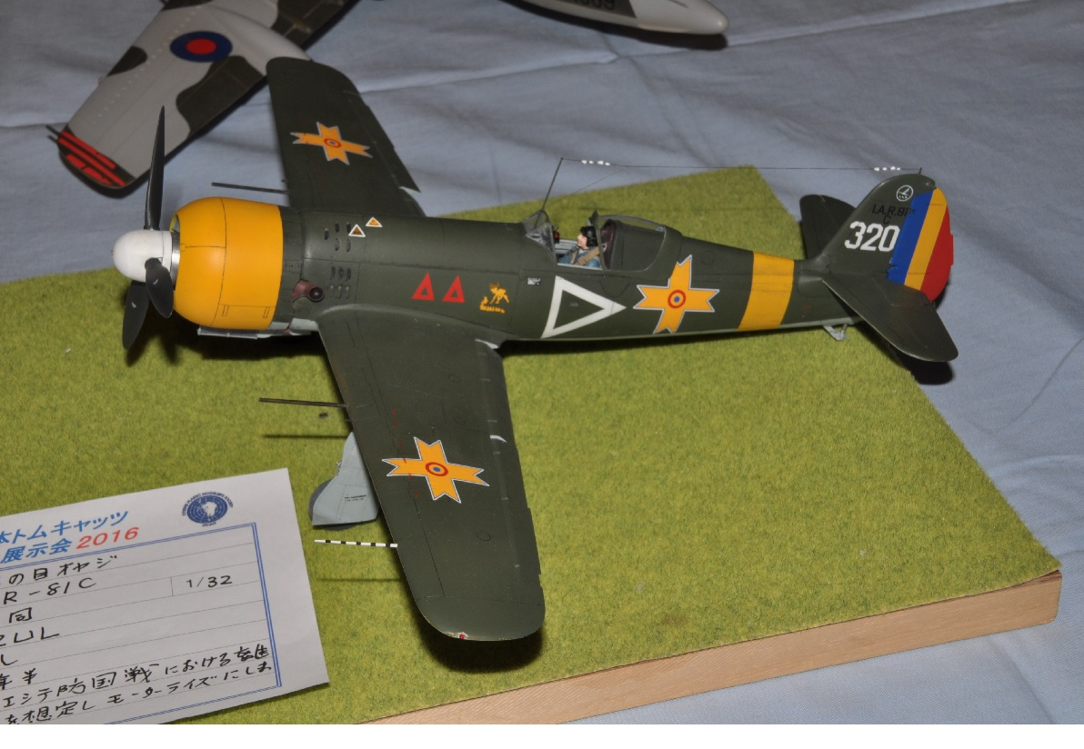 熊本トムキャッツ2016177