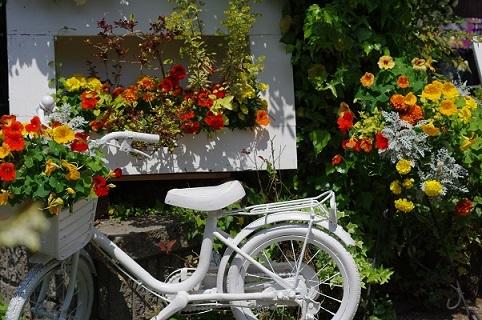 自転車180428
