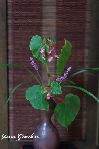生け花180909