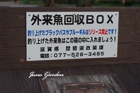 回収BOX180922