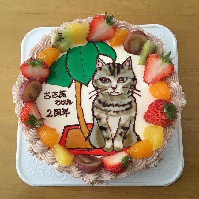 ささ美ケーキ
