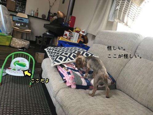 fc2blog_20180531150220a21.jpg
