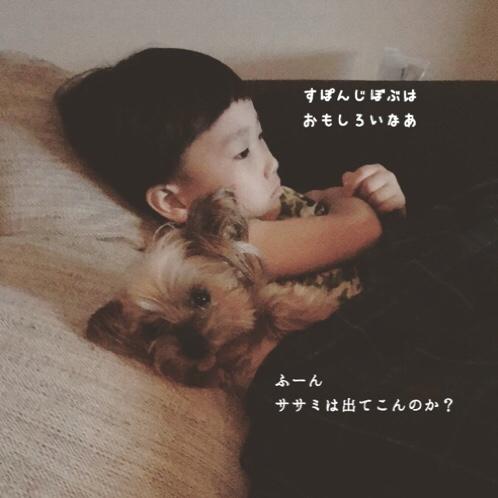 fc2blog_201807062053593e8.jpg