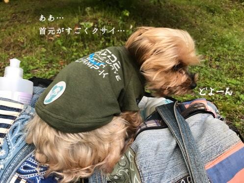 fc2blog_201808121041039a2.jpg