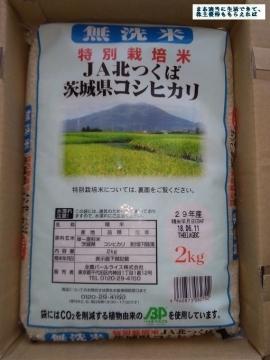 エコス 茨城県産こしひかり 無洗米2kg 201802