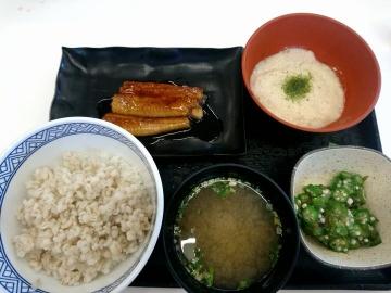 吉野家HD 麦とろ鰻皿御膳02 1807 201802