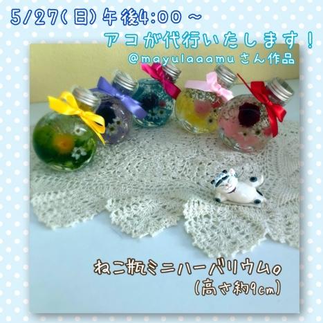 S_8000049618176.jpg