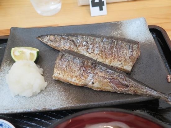 女川 焼き秋刀魚