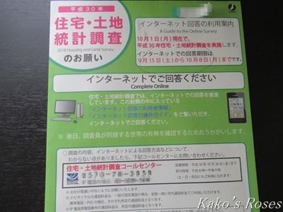 s-IMG_0163ggk30.jpg
